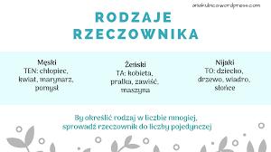 Rzeczownik od podstaw | Język polski