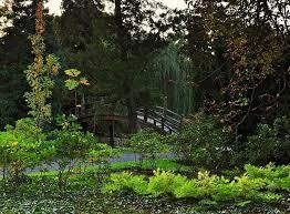 FotoReporter 24.pl - Tajemniczy ogród w tajemniczym zamku. Młodzież rządzi  w Teatrze Współczesnym