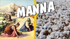 Biblia vs. Nauka #31 - Manna - YouTube