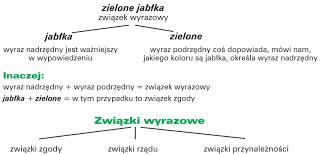 Związki wyrazowe w zdaniach | AleKlasa