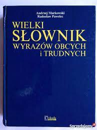 Wielki Słownik Wyrazów Obcych i Trudnych STAN IDEALNY Szczecin -  Sprzedajemy.pl